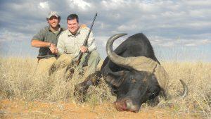 cape bufalo